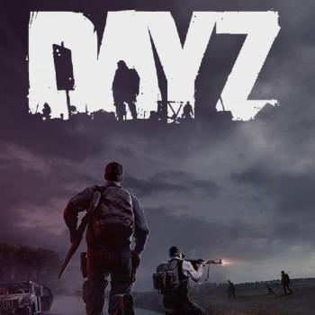خرید بازی DayZ استیم | فروشگاه ریلود گیم